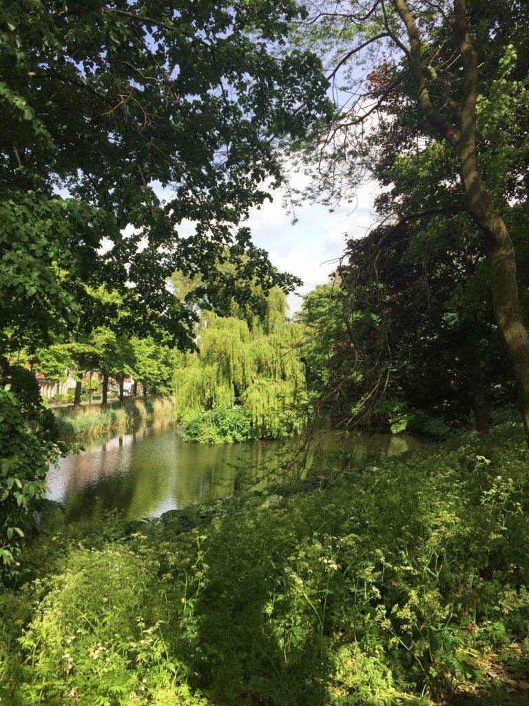 Stadswandeling Hoorn | Groene stad Hoorn