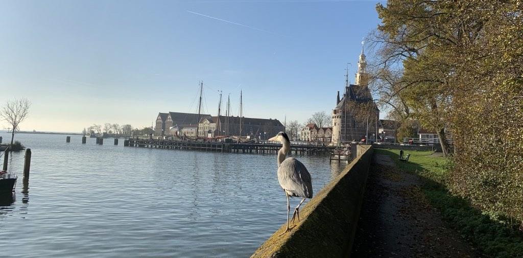 Bezienswaardigheden Hoorn - Baatland | Local Guide Hoorn