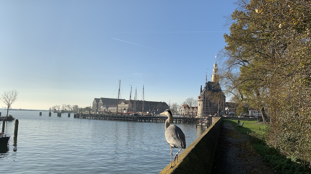 Guided tour Hoorn - active walk tour